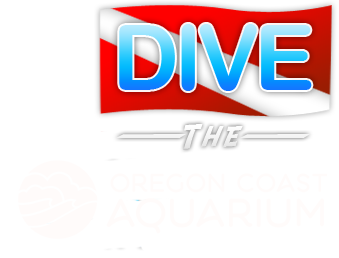 Dive The Aquarium